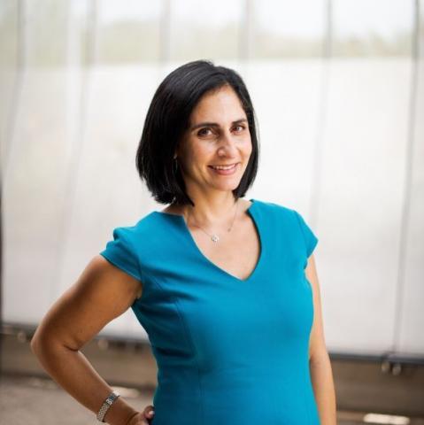 Pardis Mahdavi's avatar